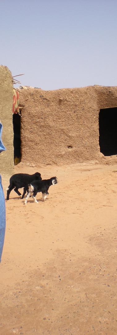 Berber life