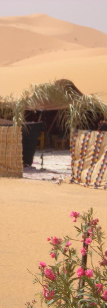 Authentic Bedouin camp