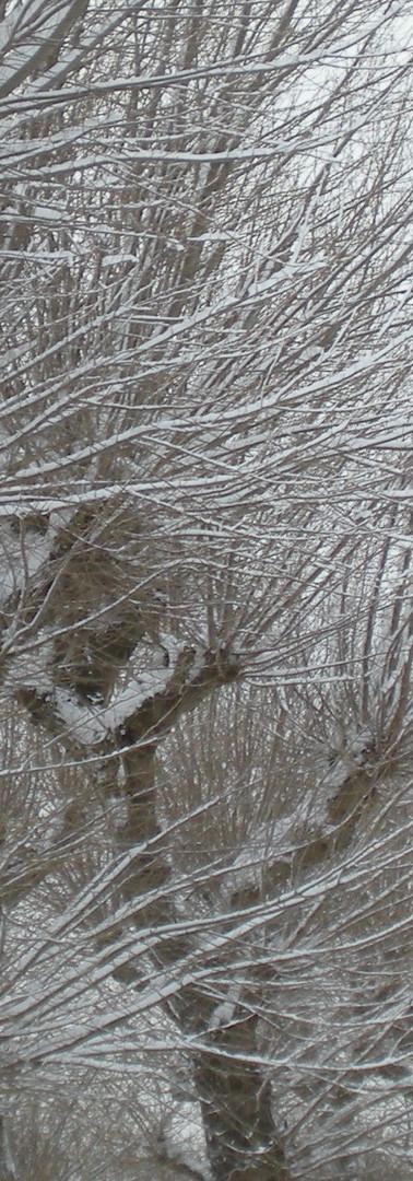 winter in the atlas