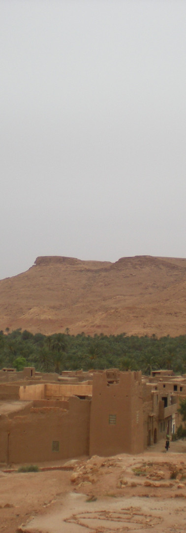 Oued Ziz Oasises