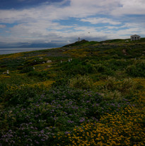 Anacapa Island, Channel Islands National Park, California.
