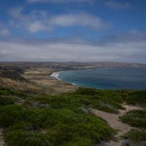 Santa Rosa Island, Channel Islands National Park, California.