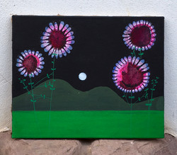 Four flowers and moon 50x40cm