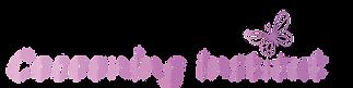 logo cocooning institut web.png