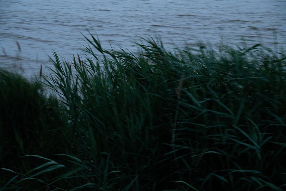 Le Conte perdu #05 Le fleuve
