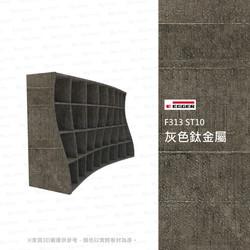 F313 ST10 灰色鈦金屬