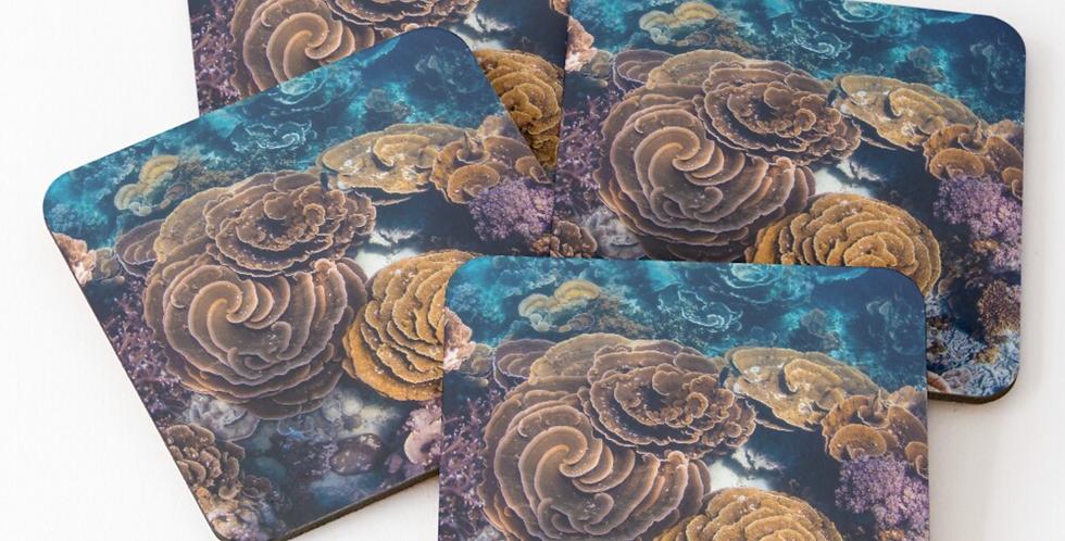 Coasters - Coral Gardens