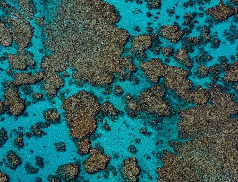 Ningaloo Reef (AER2012)