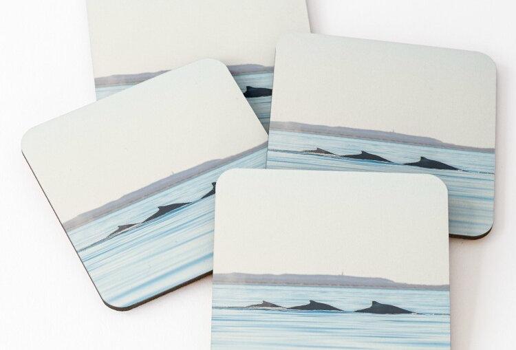 Coasters - Humpback Whales