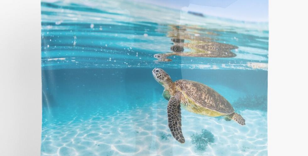 Scarf - Turtle