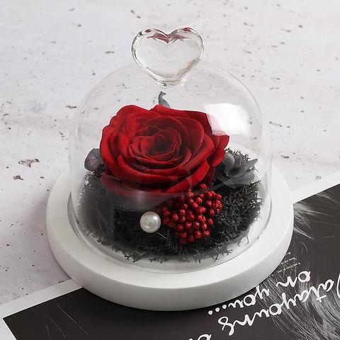 rose rouge préservée.jpg