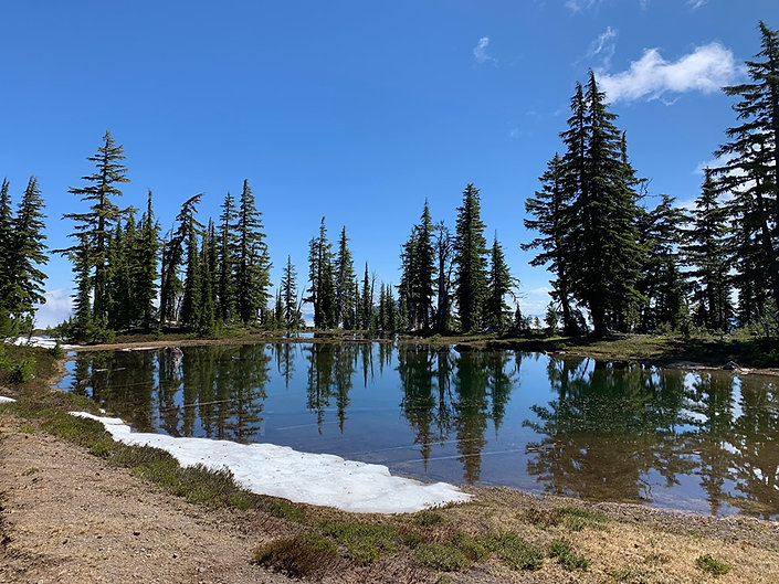 07-18 Diamond Clear Pond.jpg