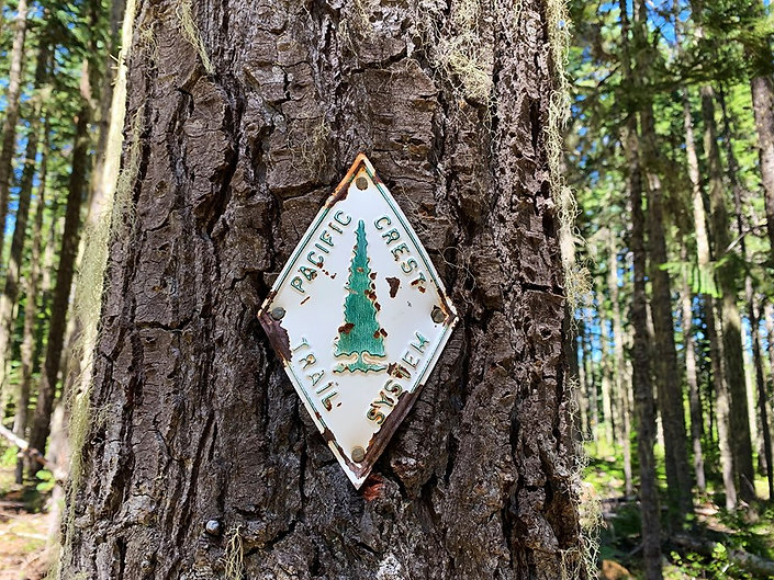 08-01 Old PCT Sign.jpg