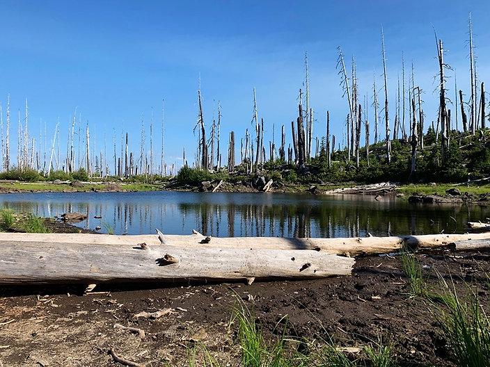 07-27 Gartersnake Pond near Wasco Lake.j