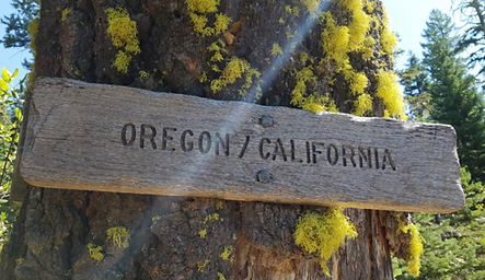 Oregon California Border Sign.PNG