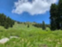 07-06 Mt Ashland.jpg