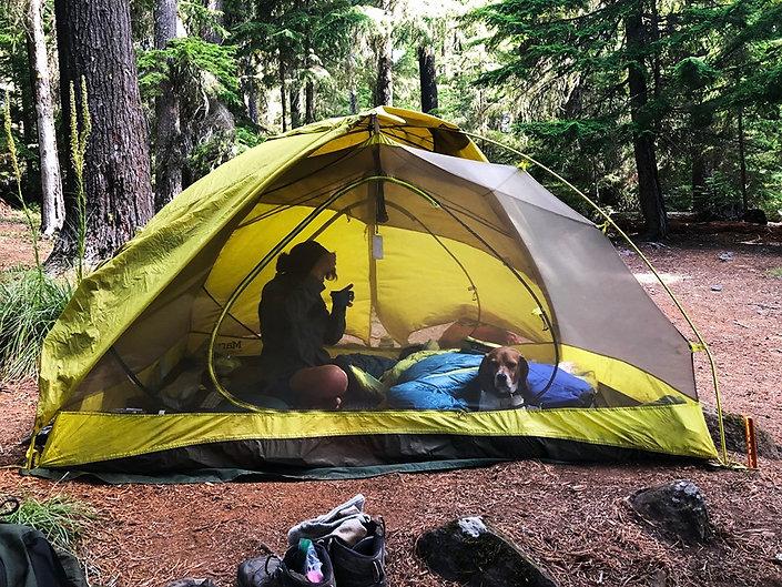 08-02 Tent at Timothy Lake.jpg