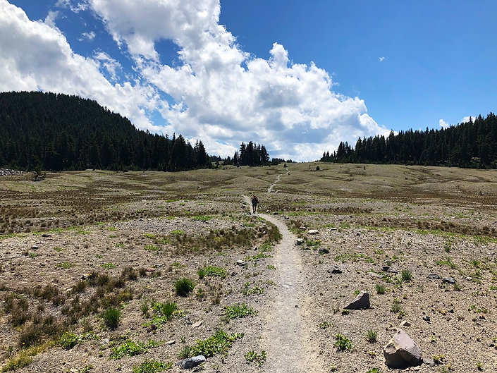 07-23 Plateau.jpg