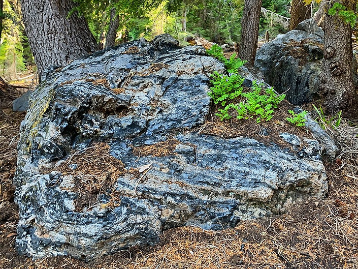 07-24 Obsidian ROck.jpg