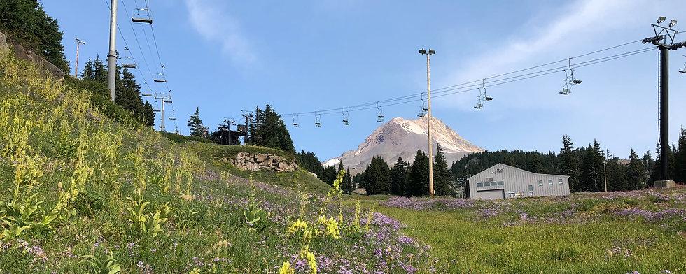 Ski Lift.jpg