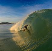 SURF -- MD PHOTO