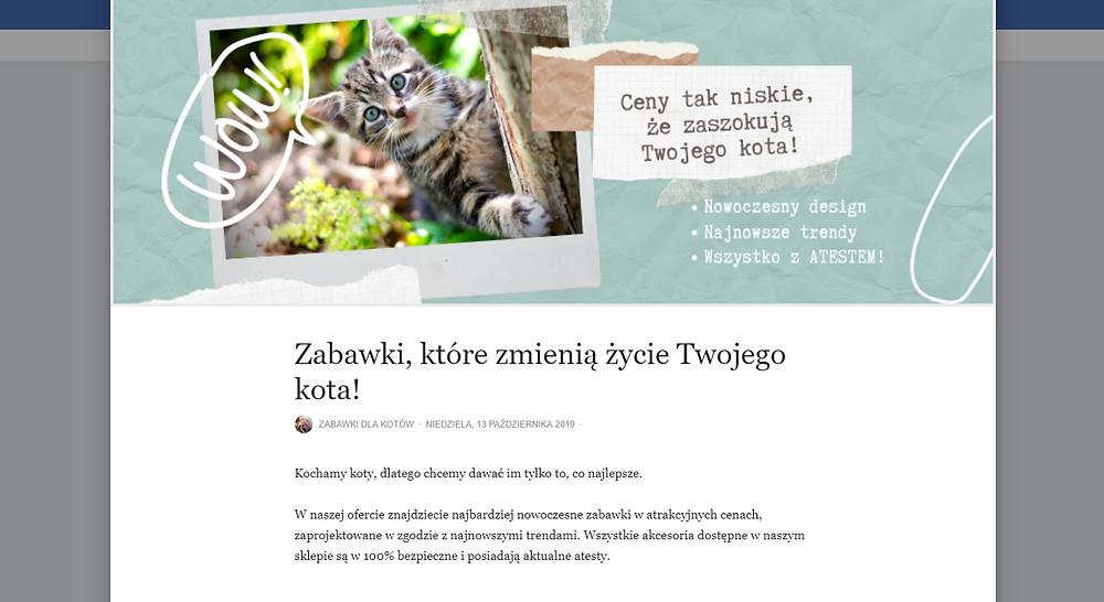 Notatka na stronie na Facebooku. Zabawki, które zmienią życie Twojego kota!  Instrukcja, jak założyć własny fanpage na Facebooku.