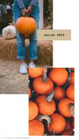 Grafika na instastory na Instagrama. Dwa zdjęcia przedstawiające dynie i osobę w dżinsach i białych trampkach, trzymającą dynię, stojącą na tle stogu siana. Napis Jesień 2019 Grafika w formie relacji na Insta Story. Dwa zdjęcia przedstawiające różnokolorowe dynie leżące na drewnianym regale pod łańcuchem z żarówkami. Na drugim zdjęciu osoba w dżinsach i białych trampkach, trzymająca dorodną dynię. Dookoła zdjęć ramki, obok wzorki w kształcie maźnięcia pędzlem. Tekst: Na grafice utrzymanej w beżowych, jasnych, neutralnych kolorach, znajduje się wycięte zdjęcie przedstawiające rudowłosą kobietę w kurtce i szaliku , stojącą na tle łąki podczas jesieni. Tekst na grafice: Najlepsze Jesienne destynacje. Planujesz jesienny wyjazd? Przeczytaj koniecznie. Darmowe grafiki na www.migato.pl.