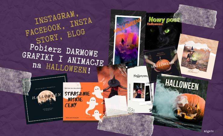 Na zdjęciu tło z pomiętego fioletowego papieru. Poprzyklejane taśmą klejącą miniatury przedstawiające darmowe grafiki na strony w mediach społecznościowych, bloga, stronę. Grafiki przedstawiają dynie, duchy, księżyc w pełni, czarownice, wiedźmy, czarnego kota, dynię. Tekst: Instagram, Facebook, Insta Story, blog. Pobierz darmowe grafiki i animacje na Halloween. www.migato.pl.