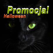 Grafika na Facebooka i Instagrama. Na zdjęciu czarny kot z jasnymi, zielonymi oczami. Tekst: Promocja Halloween darmowe grafiki www.migato.pl
