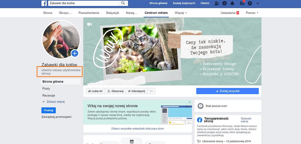 Na zdjęciu zrzut ekranu strony na Facebooku. Strona Zabawki dla kotów. Tutorial jak założyć fanpage na Facebooku.