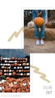 Grafika w formie relacji na Insta Story. Dwa zdjęcia przedstawiające różnokolorowe dynie leżące na drewnianym regale pod łańcuchem z żarówkami. Na drugim zdjęciu osoba w dżinsach i białych trampkach, trzymająca dorodną dynię. Dookoła zdjęć ramki, obok wzorki w kształcie maźnięcia pędzlem. Tekst: Na grafice utrzymanej w beżowych, jasnych, neutralnych kolorach, znajduje się wycięte zdjęcie przedstawiające rudowłosą kobietę w kurtce i szaliku , stojącą na tle łąki podczas jesieni. Tekst na grafice: Najlepsze Jesienne destynacje. Planujesz jesienny wyjazd? Przeczytaj koniecznie. Darmowe grafiki na www.migato.pl