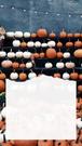 Dynie różnokolorowe, białe i pomarańczowe, leżą na półkach na regale. Na tym tle kawałek białej kartki.