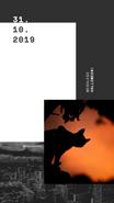 Relacja Insta Story na Instagramie. Na zdjęciu napis 31.10.2019 Wesołego Halloween. @migatomedia. Na zdjęciu czarny kot na tle nocnego nieba.