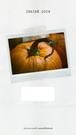 Na grafice przyklejone zdjęcie z aparatu błyskawicznego - polaroida. Na zdjęciu widać dorodną dynię. Tekst: Jesień 2019 oraz Darmowe grafiki na www.migato.pl.