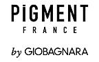 Pigment France logo