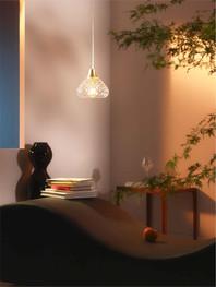Folia Pendant light