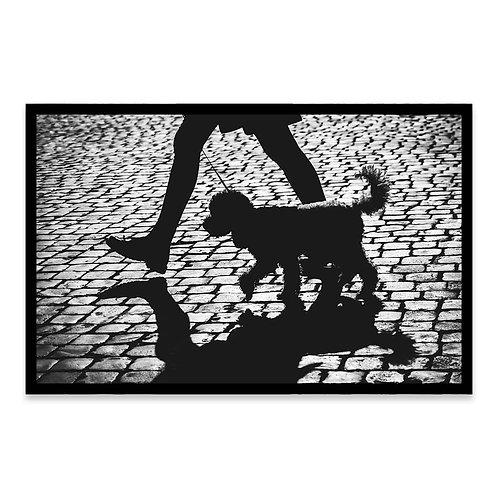 Cuadro La sombra de mi mascota