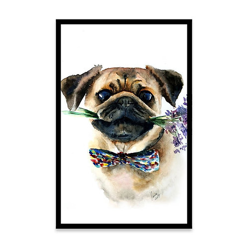 Cuadro Gentleman pug