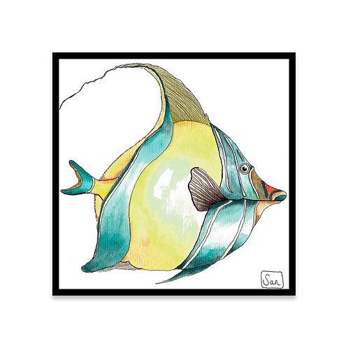 Cuadro Moorish Idol fish