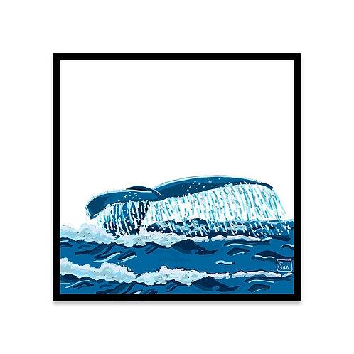 Cuadro Cola de ballena