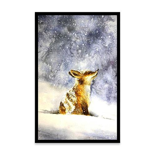 Cuadro Winter fox in snow