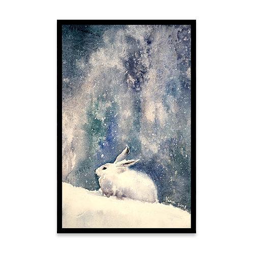 Cuadro White bunny in snow
