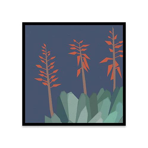 Cuadro Cactus 2