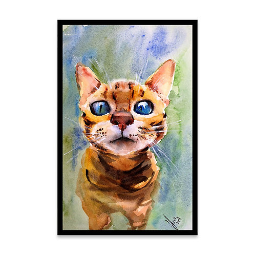 Cuadro Curious Cat
