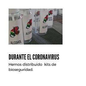 Durante el Coronavirus.png