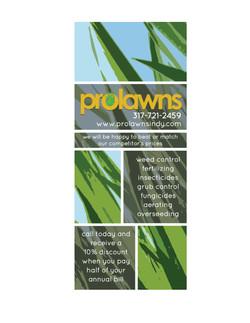 12prolawns