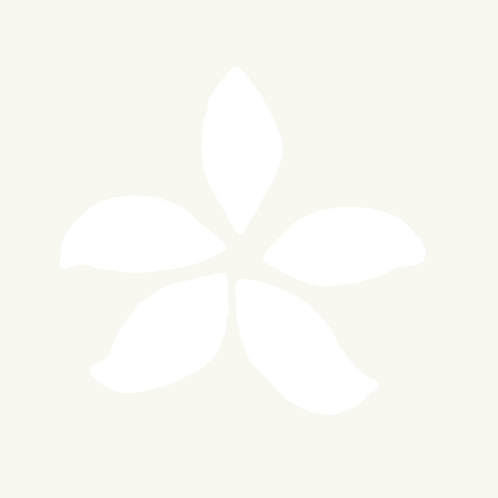 Orchid Stencil