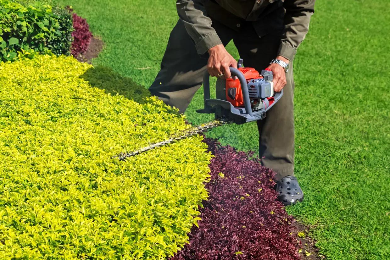 Entretien de jardin à la journée