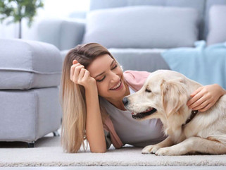 House Sitting and Pet Services