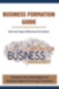 Business Formation Guide